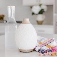Desert Mist Diffuser on a kitchen countertop